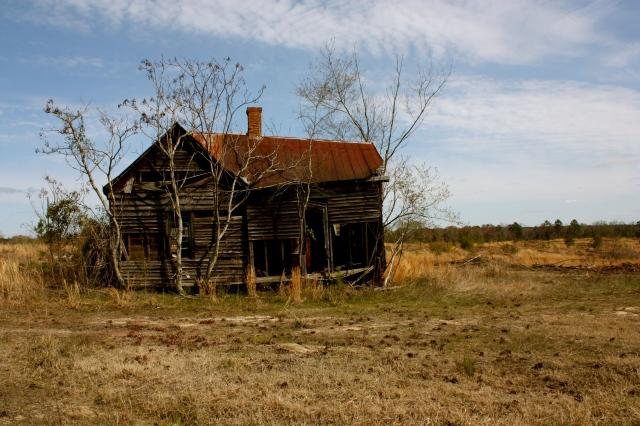 Treutlen County Decay 1