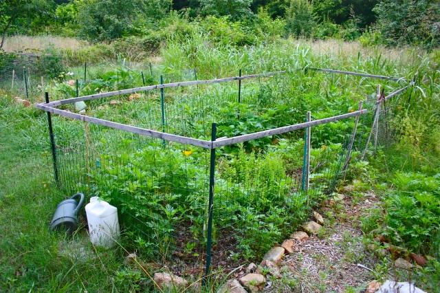 Boulevard Garden Plot 2