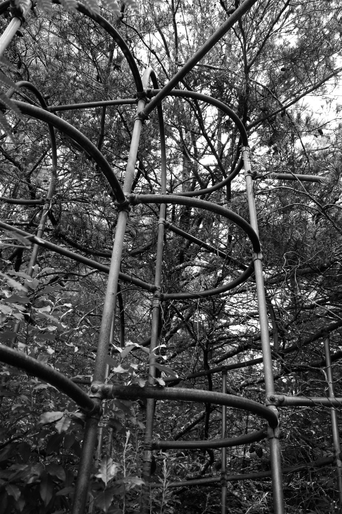 Overgrown Jungle Gym