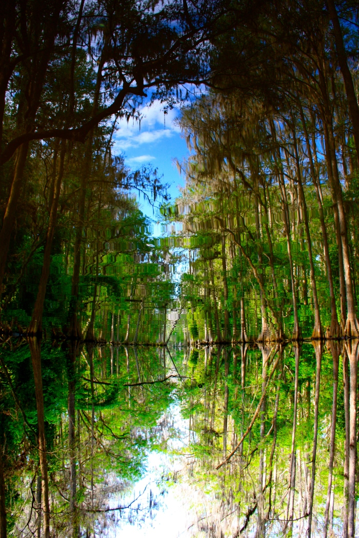 Elfin River
