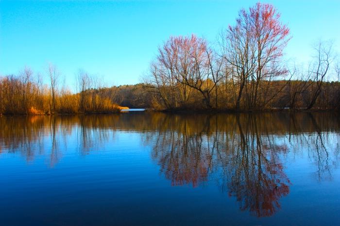 Lake Chapman Mirror