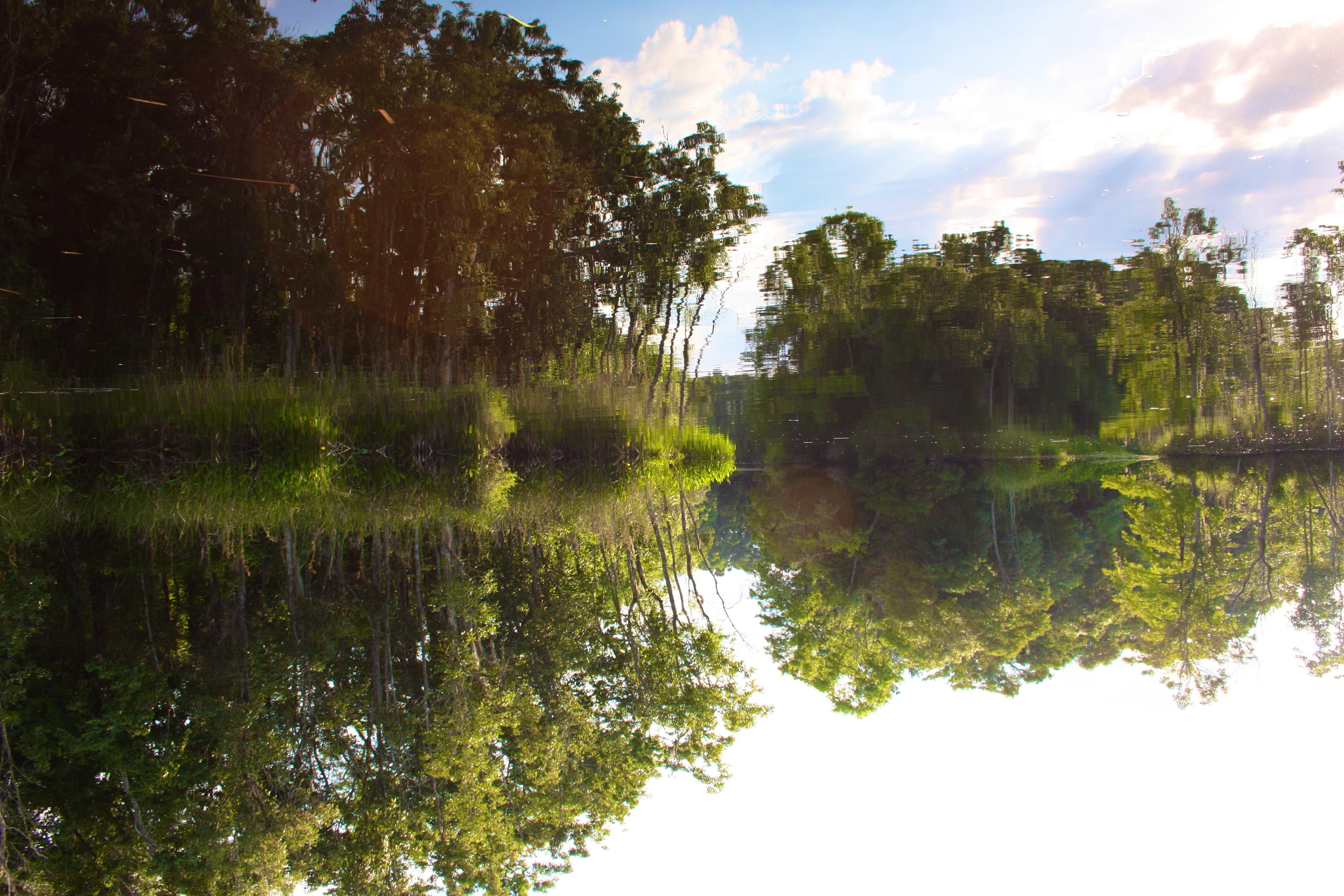 Lofton Creek Black Water Mirror