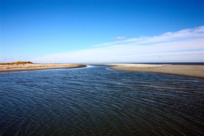 November Tide Pool