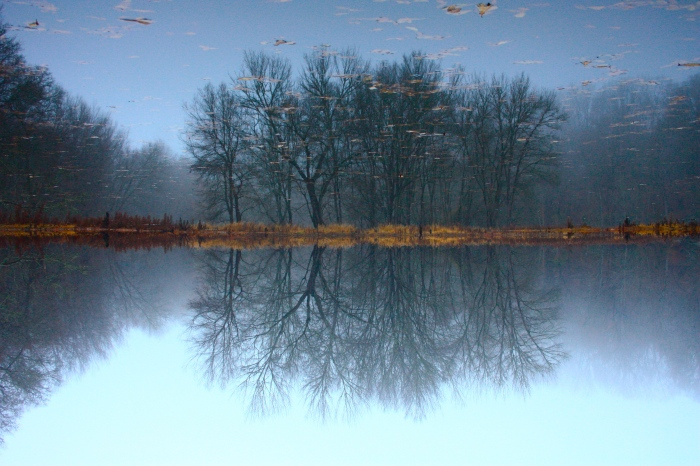 Claypit Pond Mirror
