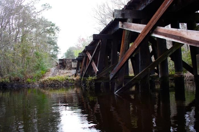 Blounts Branch Trellis Lofton Creek